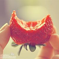 Fruitvliegjes-voorkomen-en-bestrijden-2